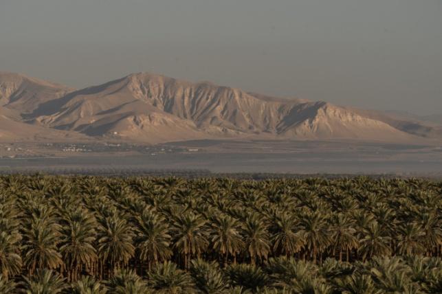 טיול גאו-פוליטי לבקעת הירדן ומדבר יהודה | 2 ימים | כולל לינה בוילה מפוארת בקיסריה
