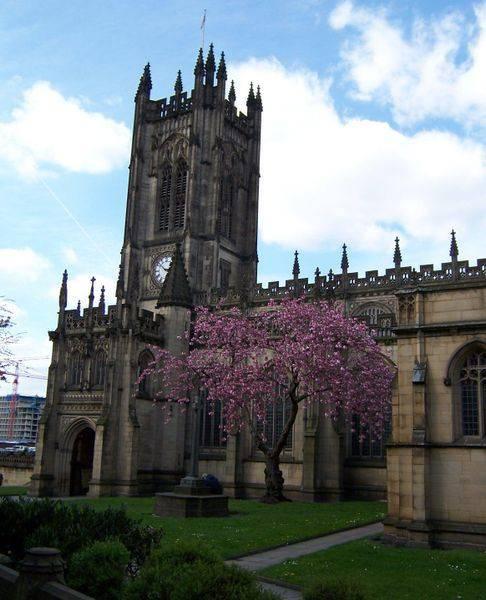 קתדרלת מנצסטר. צילום: ויקיפדיה