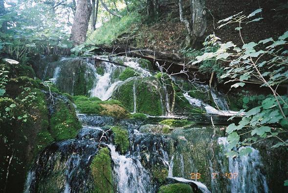 פארק פליטביצה (Plitvice)