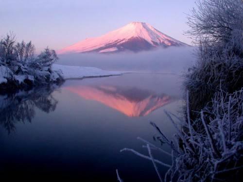 הר פוגי