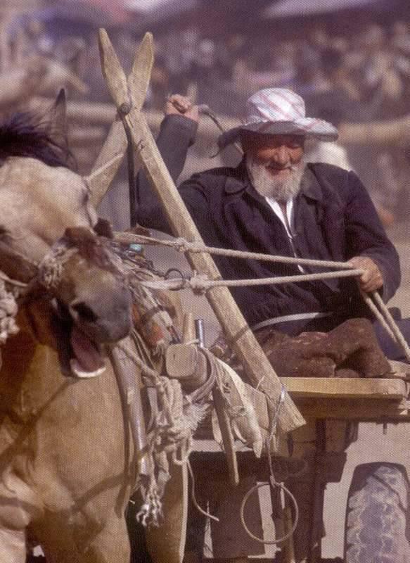 איכר מקומי רכוב על כלי התחבורה העתיק - חמור