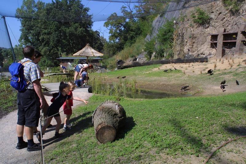 ביקור בגן החיות הוא בגדר חובה למטיילים בפראג עם הילדים. צילום: Czech Tourism