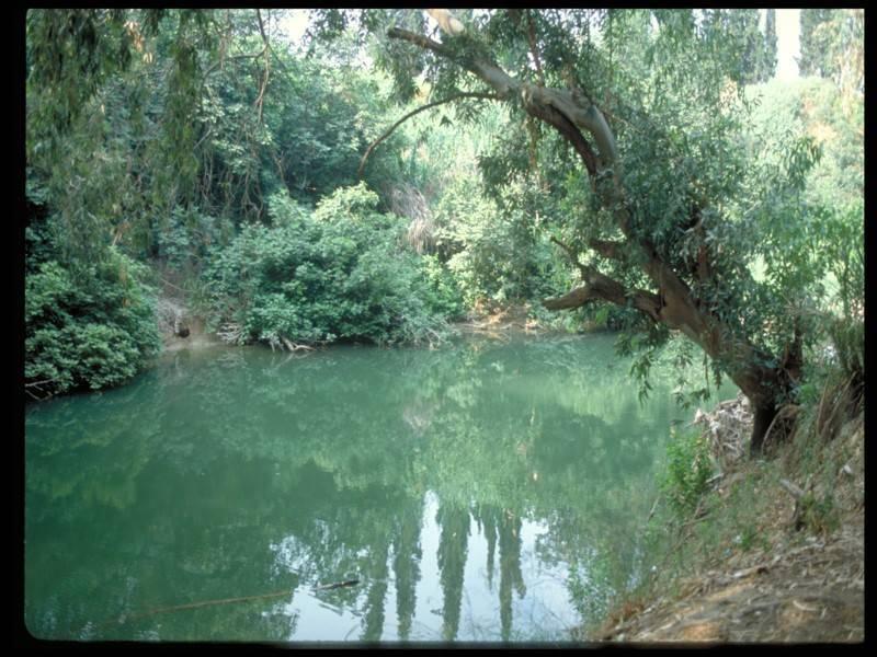 מעברי מים ופריחה גלילית (צילום: באדיבות משרד התיירות)