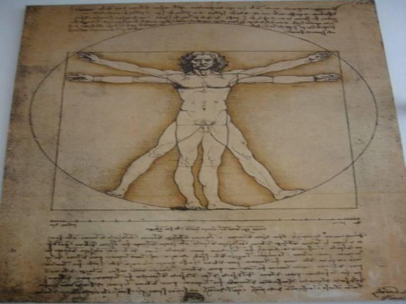 תמונה מתוך גלריית ליאונרדו דה וינצי מתוך מוזיאון המדע והטכנולוגה לאונרדו דה-וינצי
