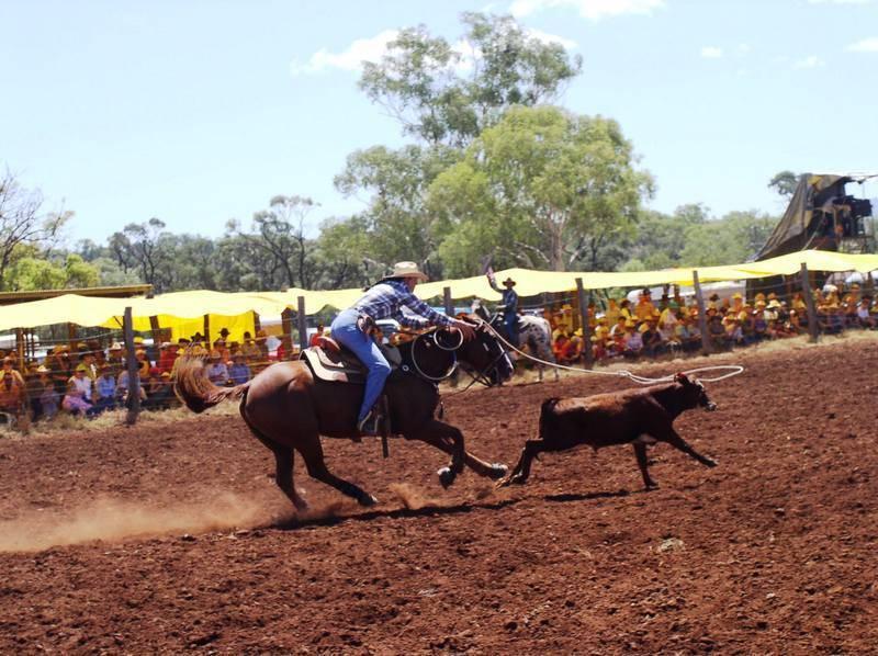 מירוץ הסוסים הגדול. צילום: לשכת התיירות המקומית