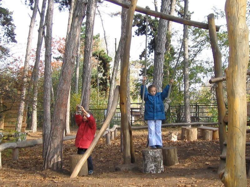 מתקני שעשועים בגן החיות. צילום: Czech Tourism
