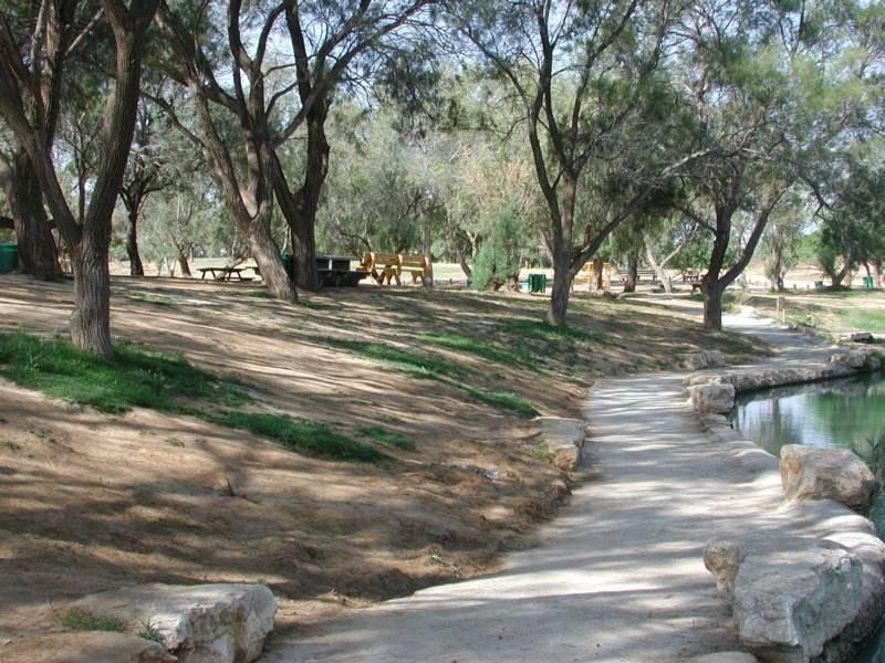 פארק אשכול בנגב. צילם: פרופסור אלי זמסקי, רשות הטבע והגנים