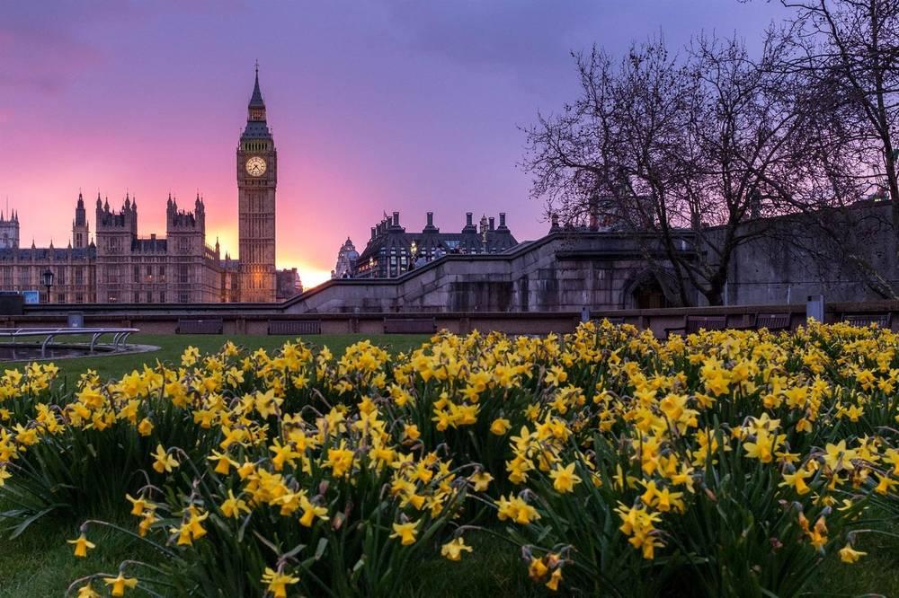 טיול מאורגן ללונדון   29.7   7 ימים