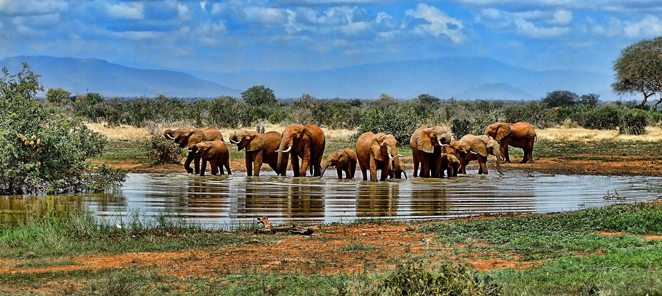 טיול מאורגן לדרום אפריקה ומפלי ויקטוריה | 5.4, 15.5 | 12 ימים , 10 לילות