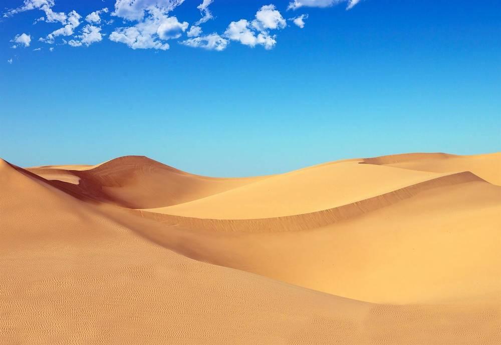 טיול מאורגן למרוקו   17.11   11 ימים