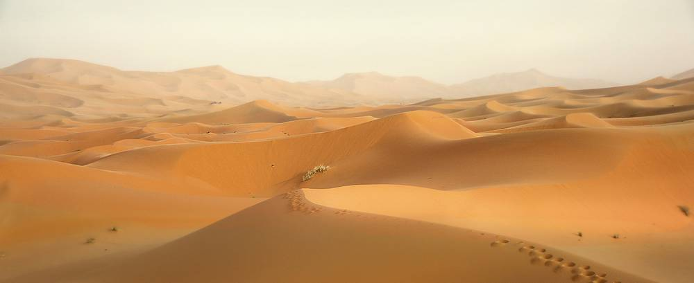 טיול מאורגן למרוקו בסוכות 11.10 | 12 ימים (AC)