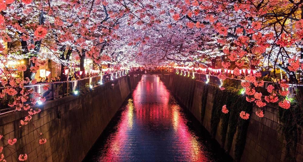 טיול מאורגן אקספרס ליפן | 11.5 | 11 ימים, 8 לילות