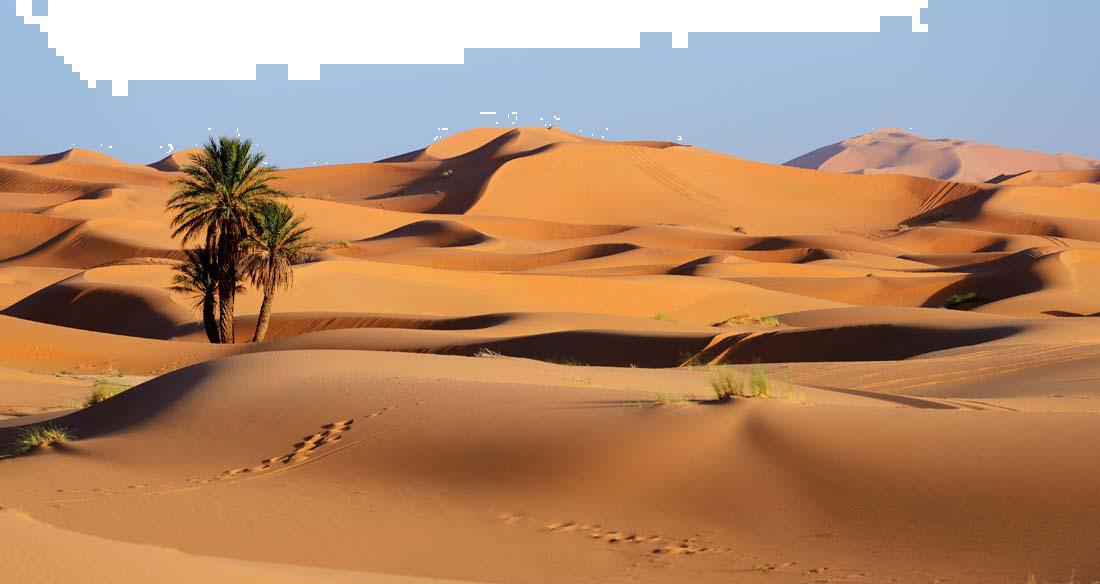 טיול כשר מאורגן למרוקו   4.5   11 ימים   ל