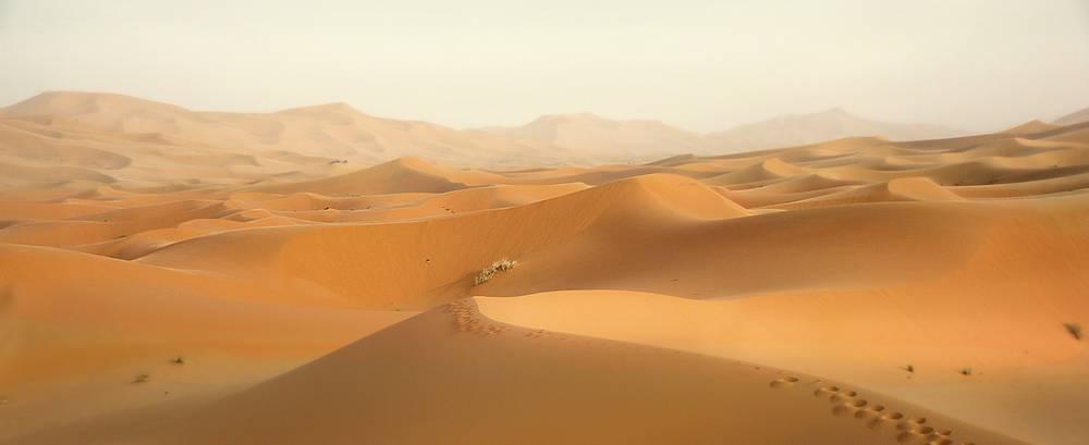 טיול מאורגן למרוקו 30.9 | 11 ימים