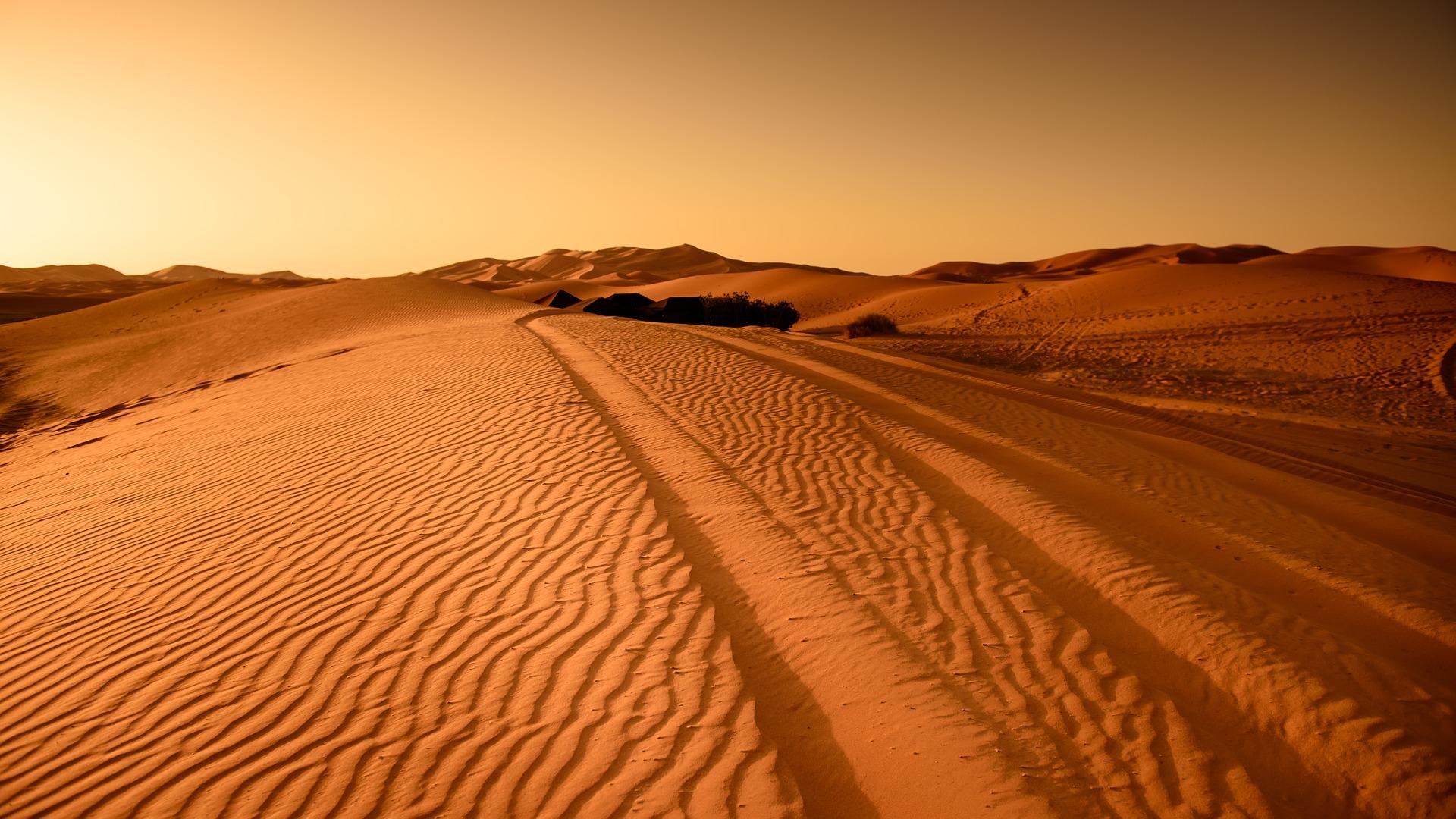 טיול מאורגן למרוקו | 11 ימים