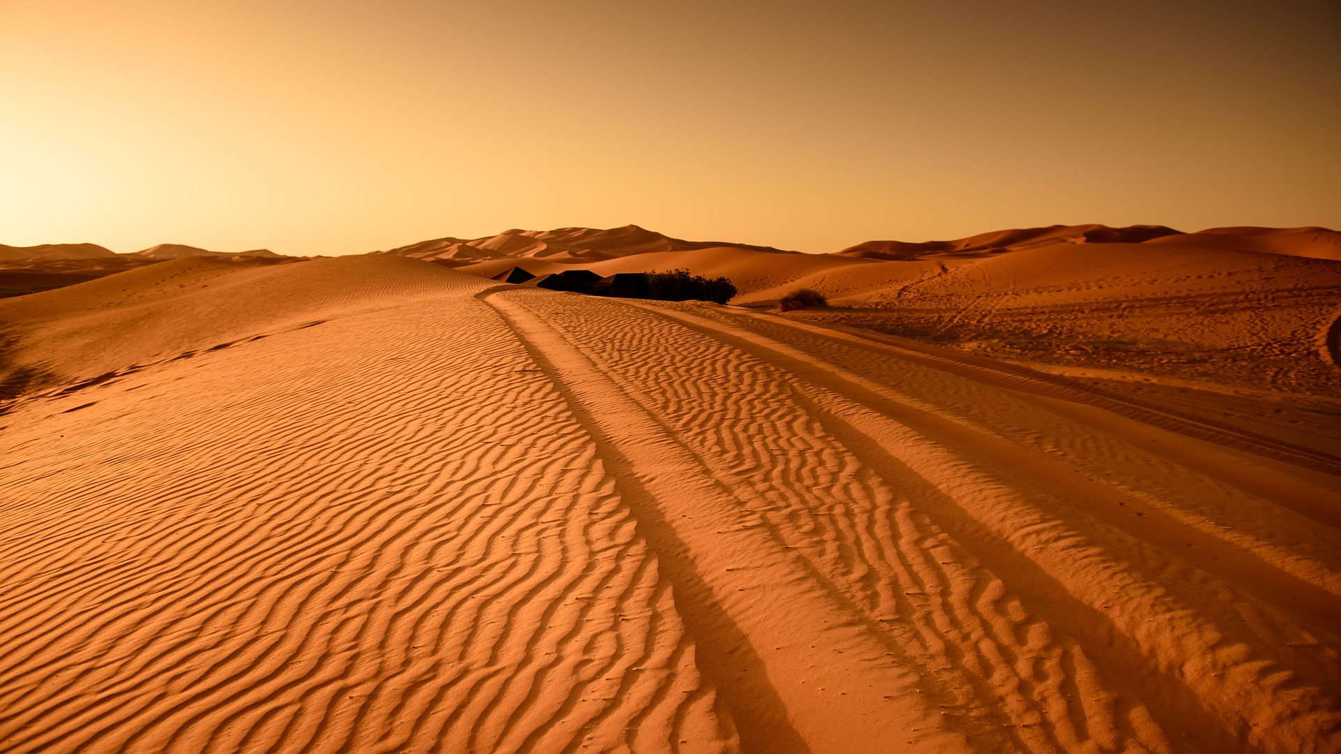 טיול מאורגן למרוקו | 7.6 | 11 ימים