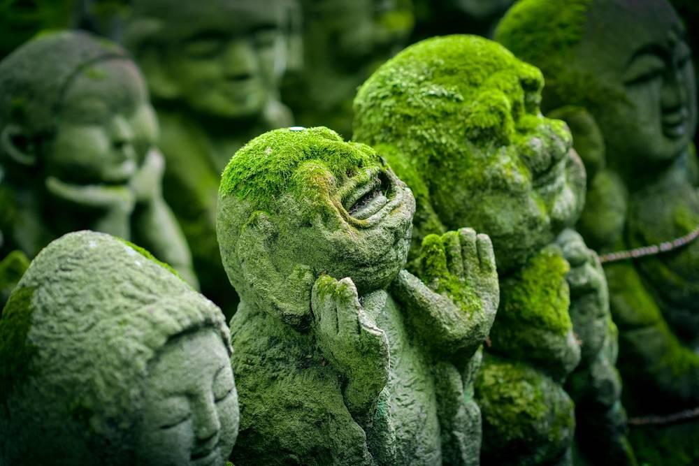 בטיול ליפן של דיסקברי טיול עולמי אין ימים חופשיים ואין תוספות בתשלום