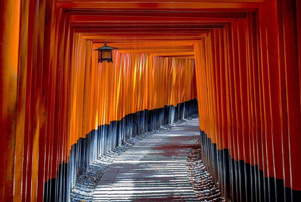הטיול של דיסקברי טיול עולמי הוא הטיול ליפן המקיף ביותר שתמצאו בשוק.