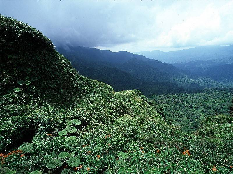 מונטבידאו קוסטה ריקה