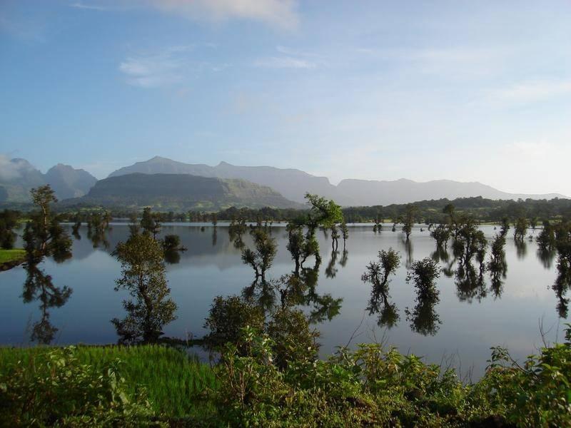 סרילנקה: נוף אגם בסביבה מיוערת צילם: אילן זיו