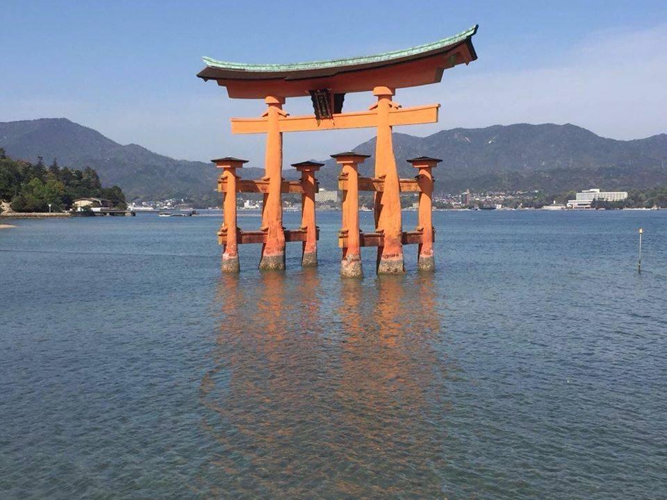 יפן, צילום: ספי פרנק