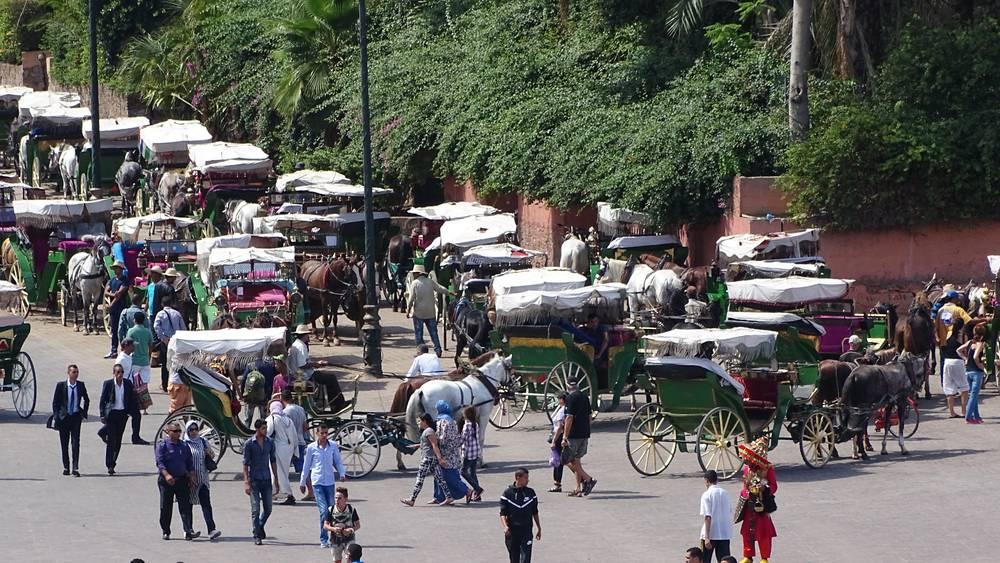 מרוקו, צילום: הרצל אברהם